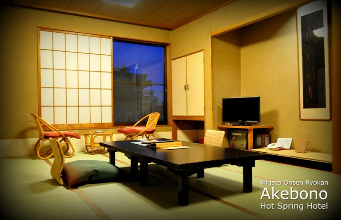 akebono-hotspring-hotel-superior-room