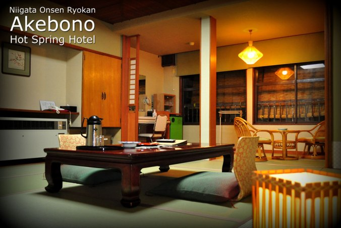 Standard Room at the Akebono Hot Spring Onsen Hotel