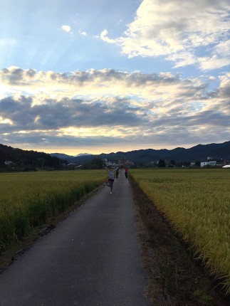 Walking through the rice fields